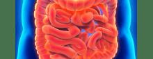 O exame de colonoscopia virtual