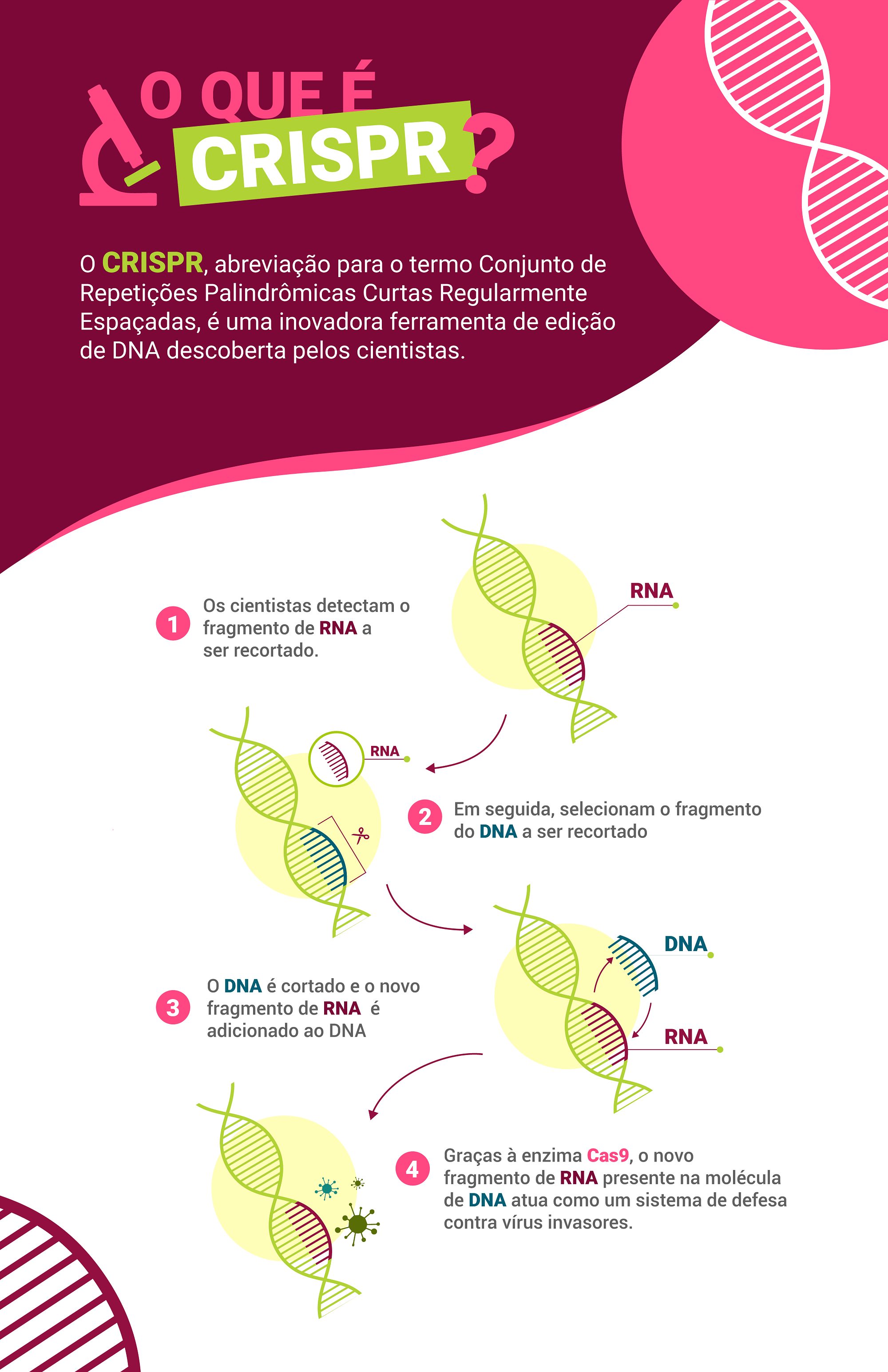 Infográfico do CRISPR