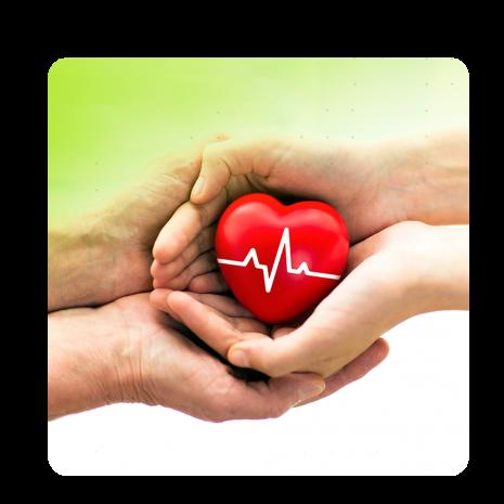 Setembro Verde: Mês é dedicado ao incentivo à doação de órgãos